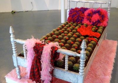 Bed-of-Cactus-4-Mordoch-warm