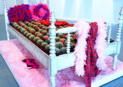 Bed-of-Cactus-7-Mordoch-left