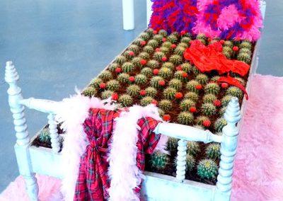 Bed-of-Cactus-Mordoch