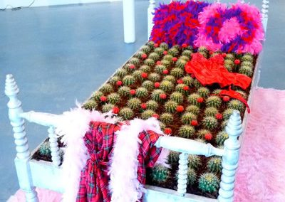 In and Out of Bed of cactus