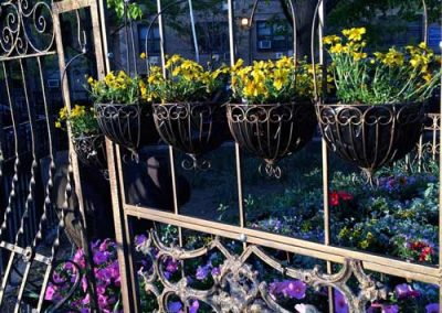 Flower-Bed-Marcus-Garvey-hanging-baskets-